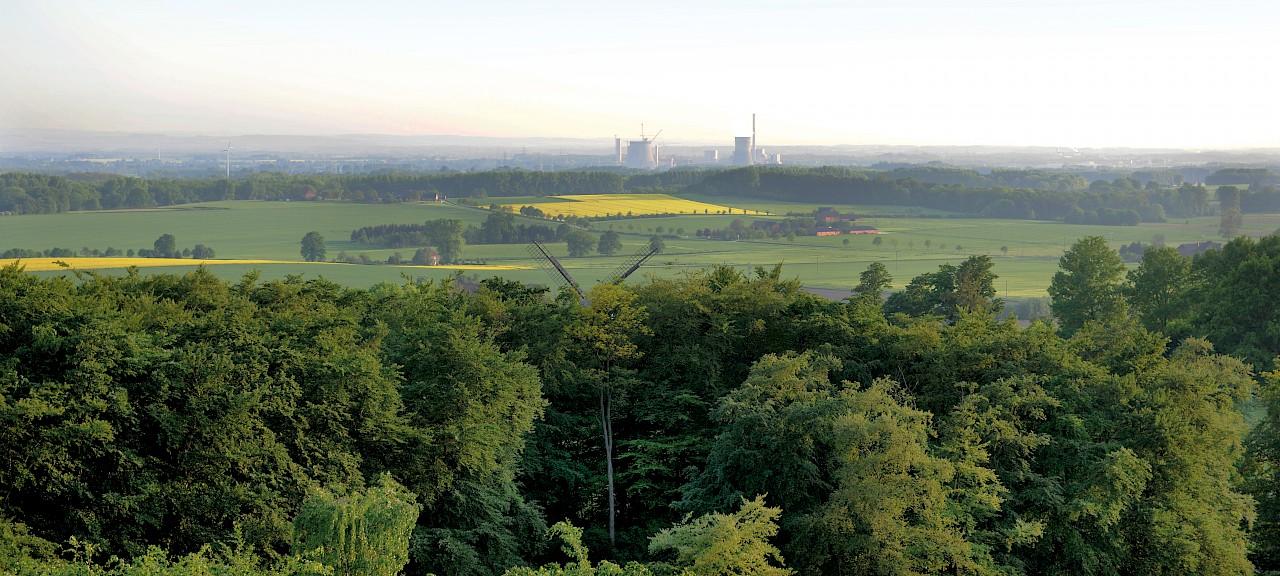 Beckum Landschaft Höxberg
