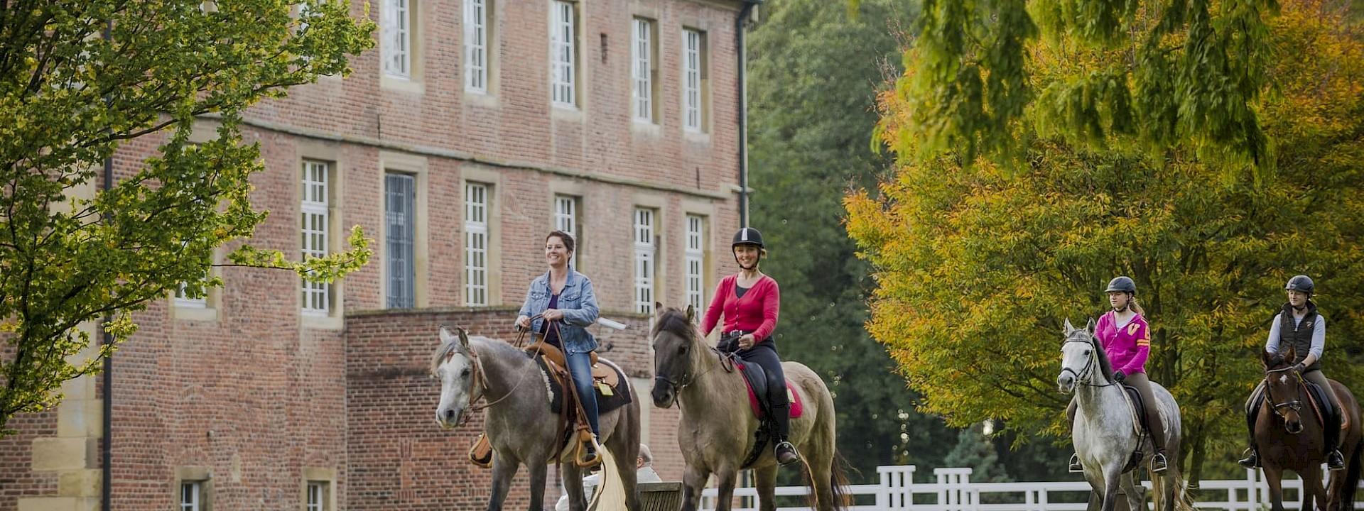 Wo das Herz der Pferde schlägt Reiten im Münsterland