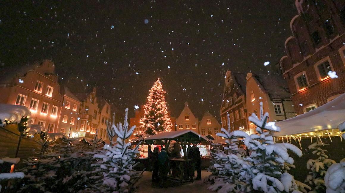 Warendorfer Weihnachtswäldchen im Schneetreiben