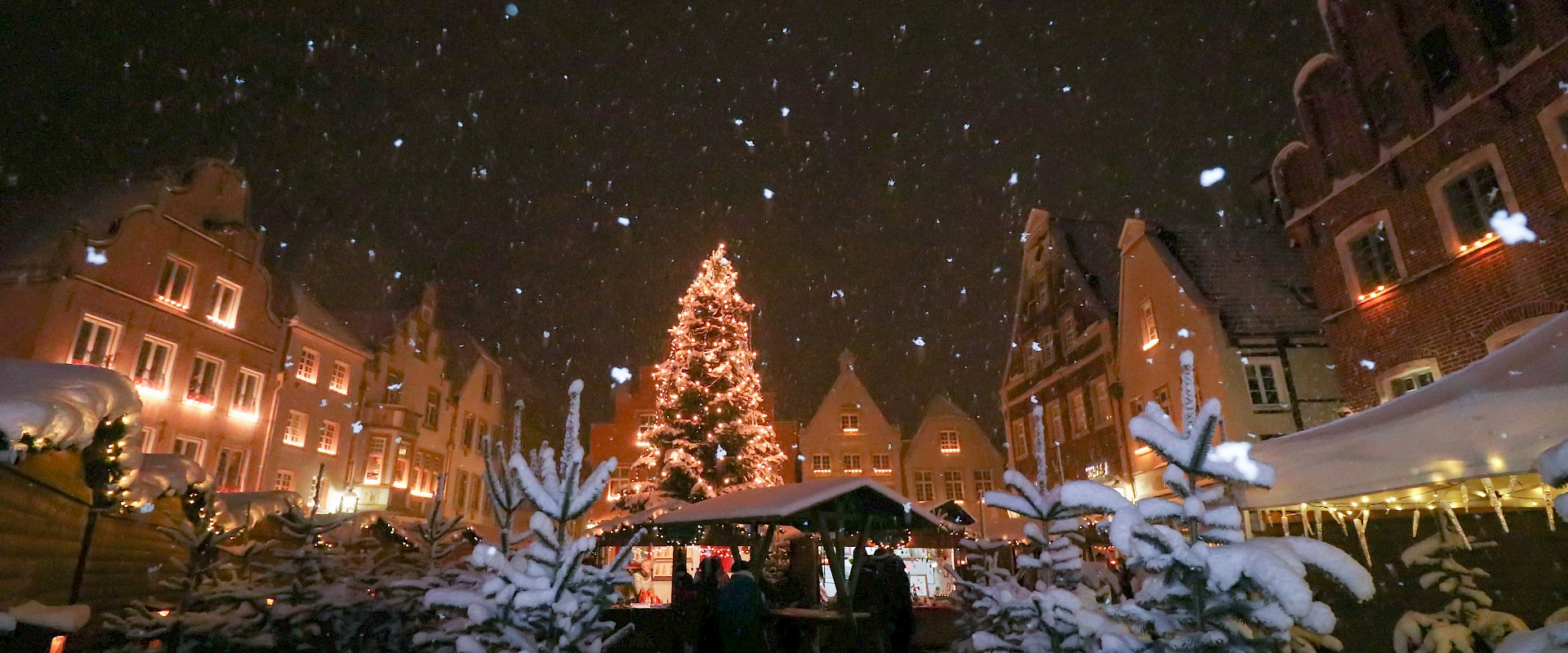 Warendorfer Weihnachtswäldchen