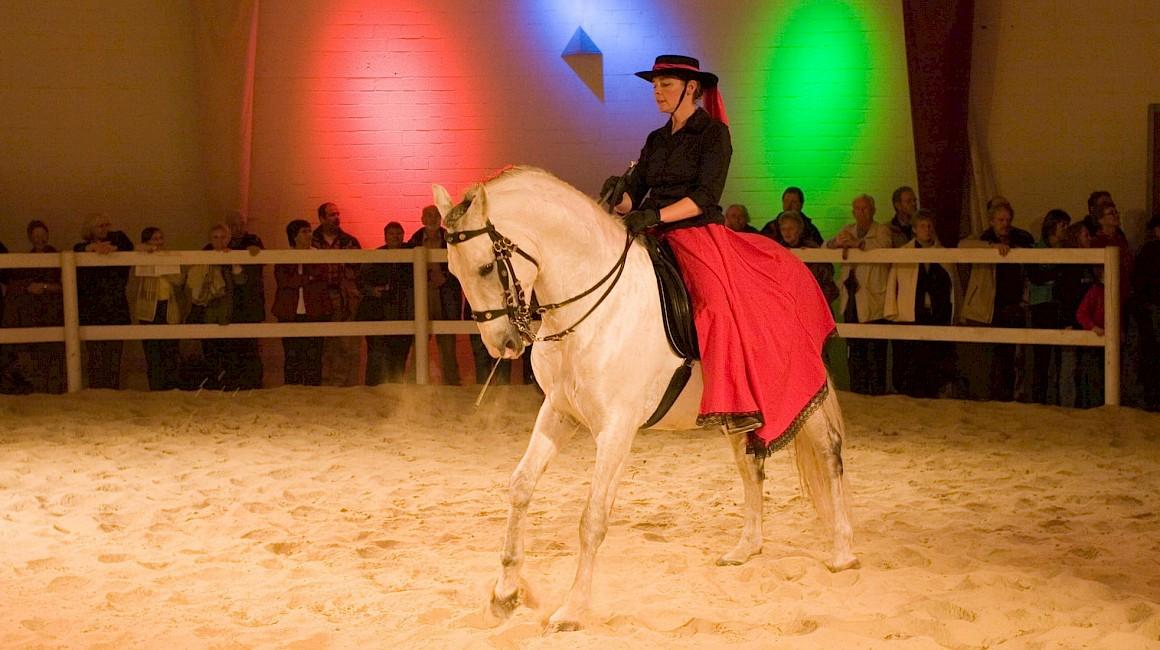 Pferdeshow im Pferdemuseum