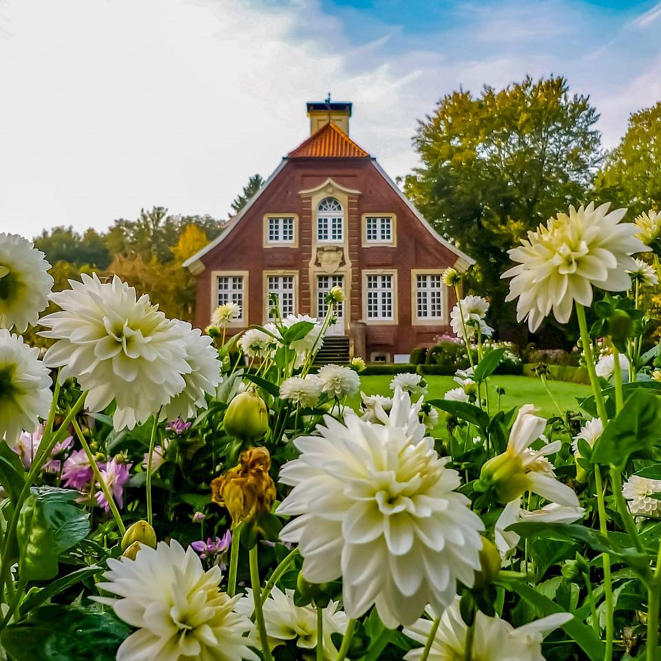 Haus Rüschhaus mit Herbstblumen