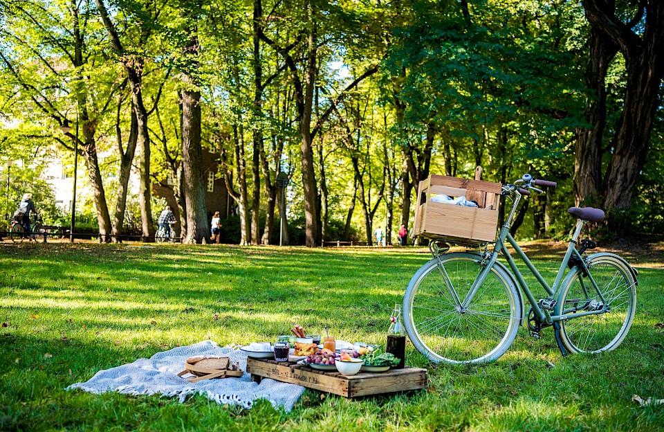 Picknicken im Münsterland