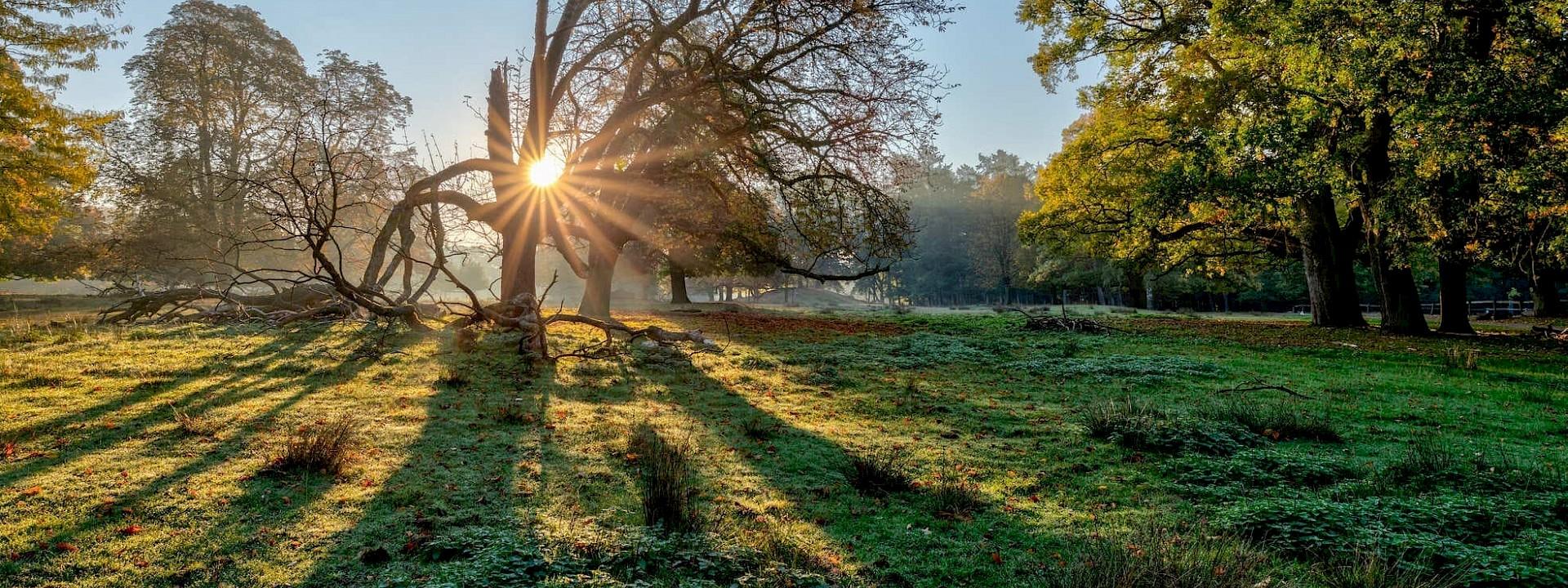 Wo Natur die schönsten Bilder zeichnet Naturpark Hohe Mark