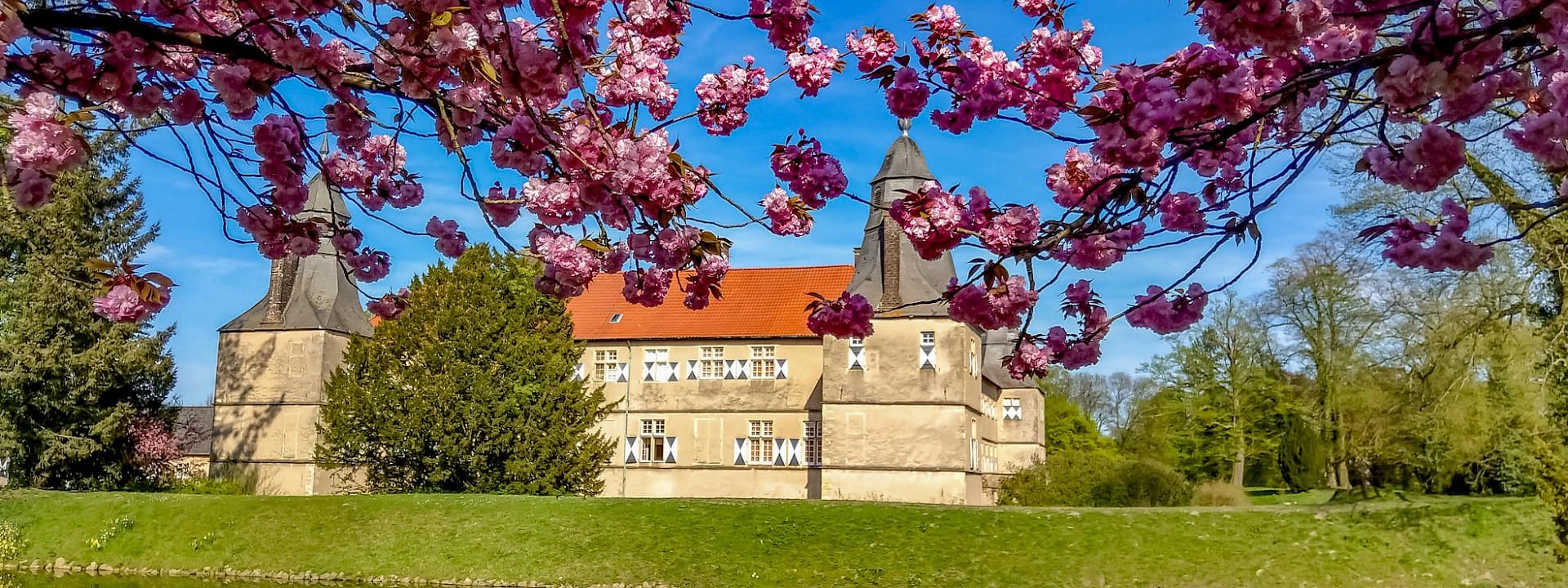 Das Münsterland öffnet wieder! Schlösser und Burgen erleben