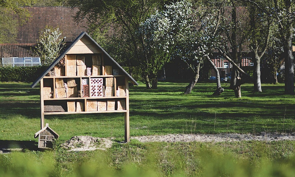 Insect hotel in the Münsterland