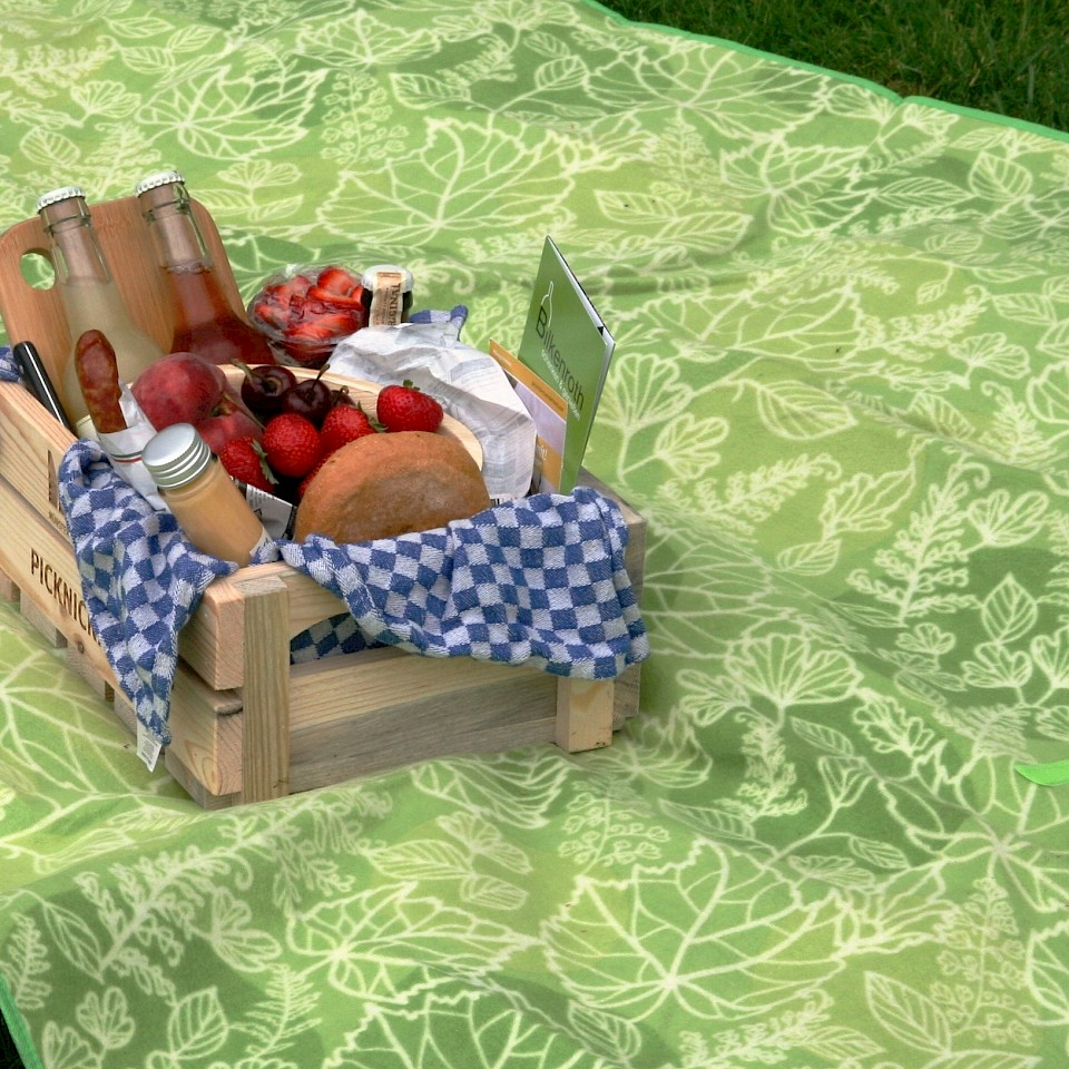 Picnic at the reservoir