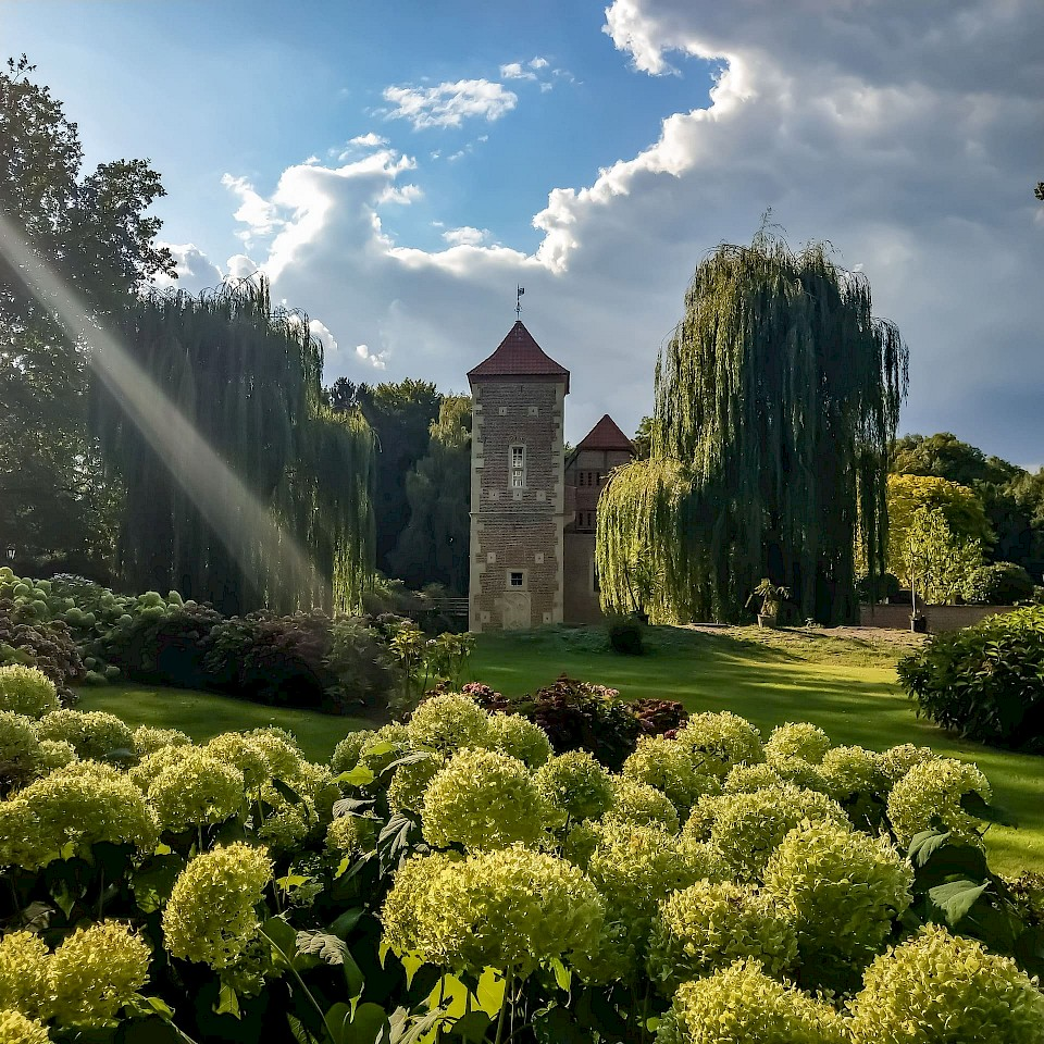 Parkblick auf die Burg Hülshoff