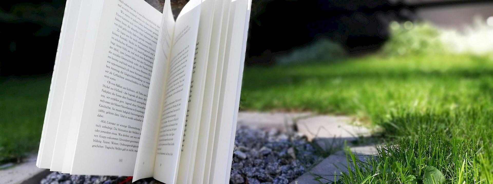 Klimaschutz Filme und Bücher