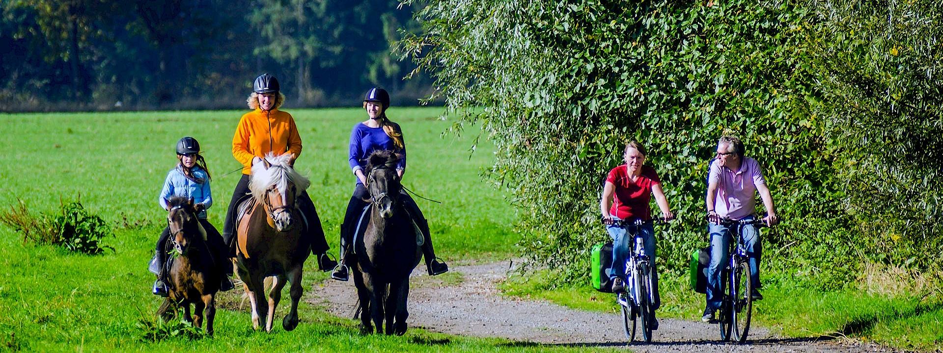 Draußen in der Natur Ausflüge im Münsterland