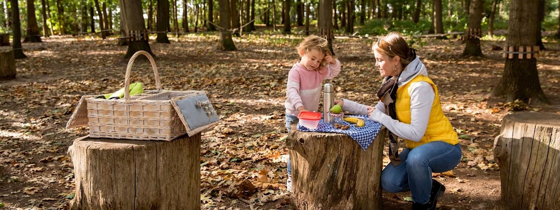 Hoch oder tief hinaus? Picknickspaß im Niedrigseilgarten