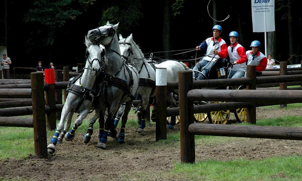 Fahrsport beim Riesenbeck International
