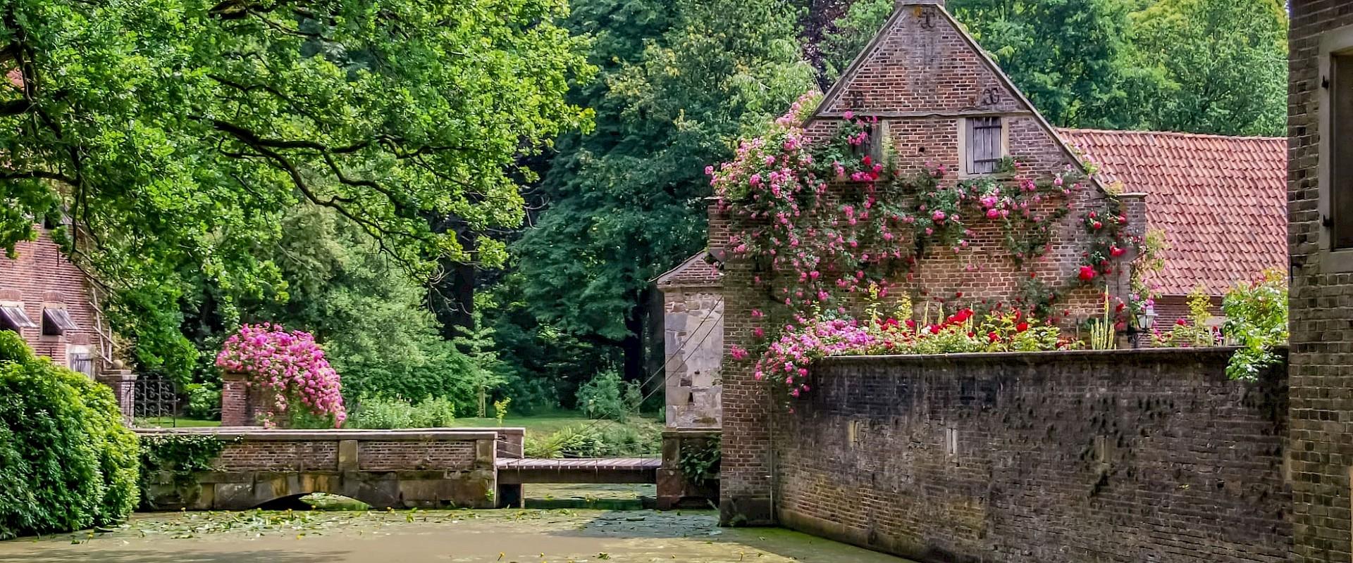 Sommer am Haus Welbergen