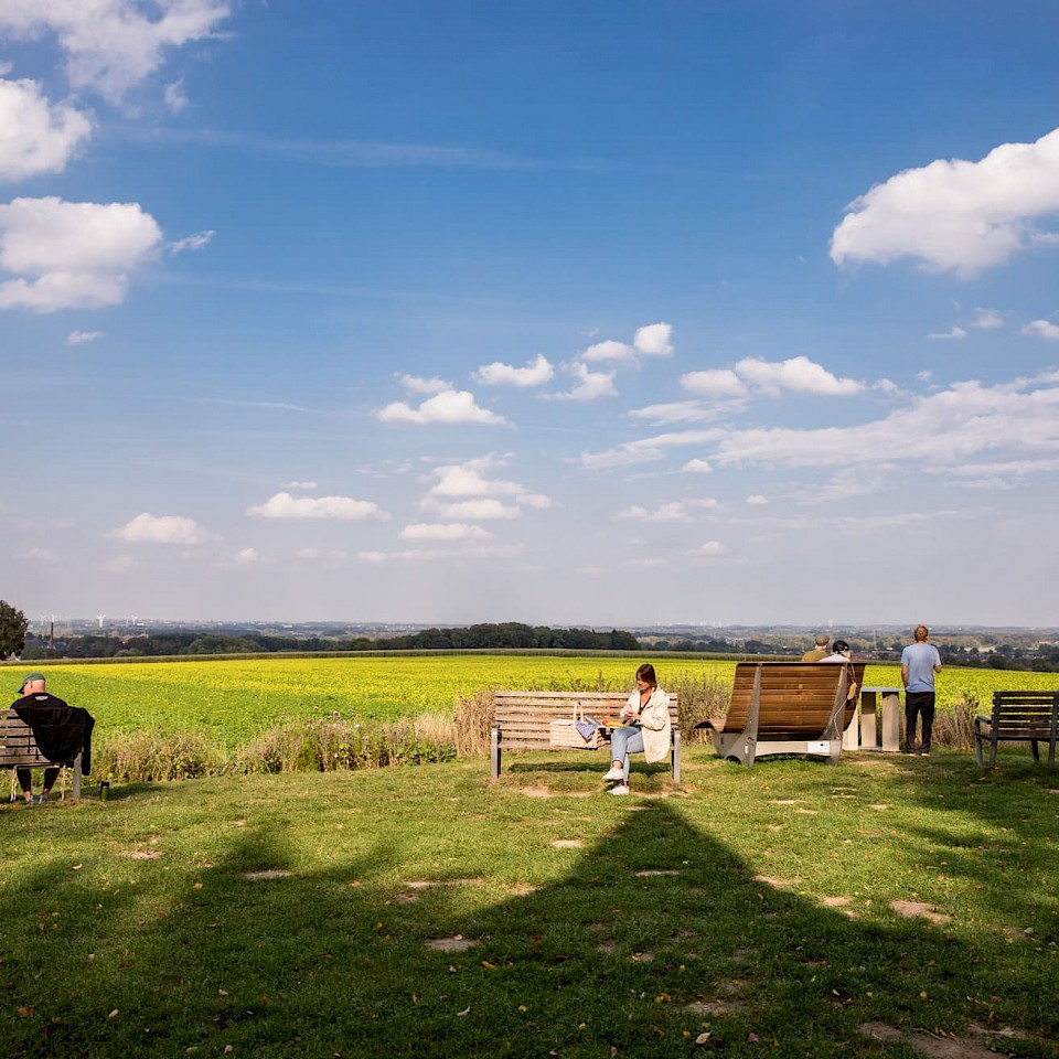 Landscape in the Münsterland