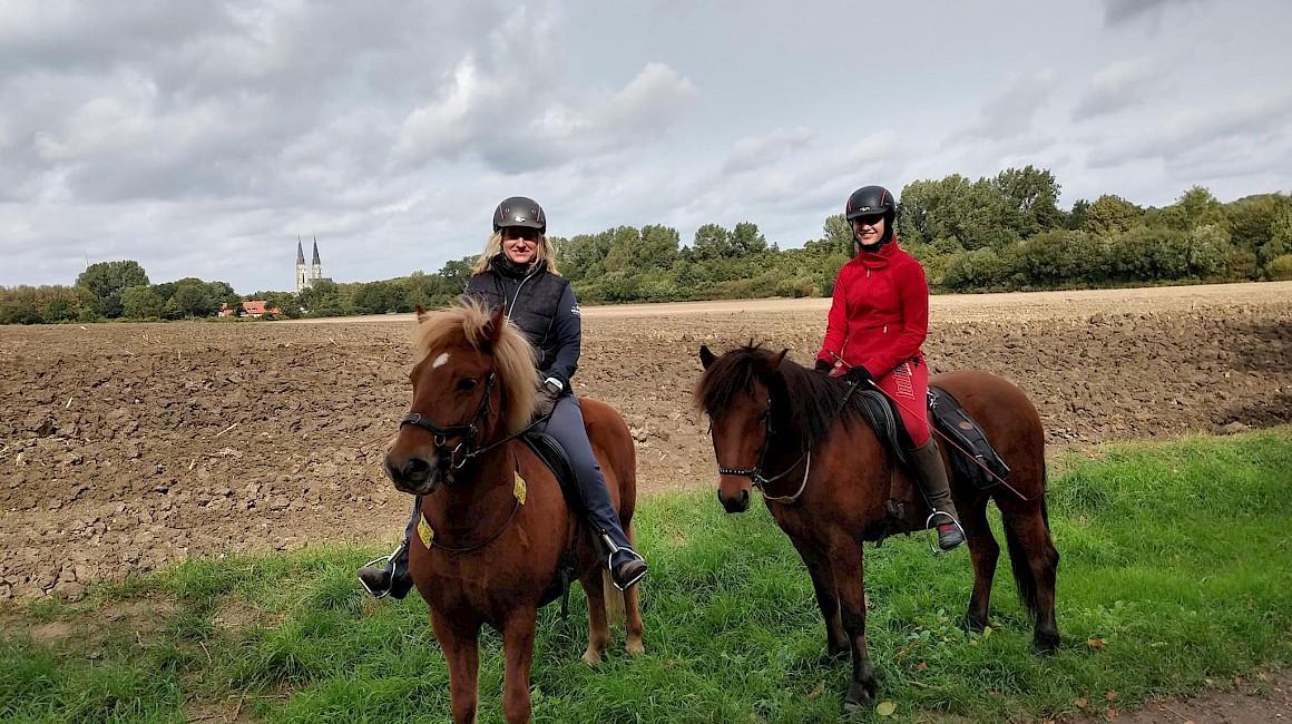 Mit den Pferden auf den Höhen der Baumberge