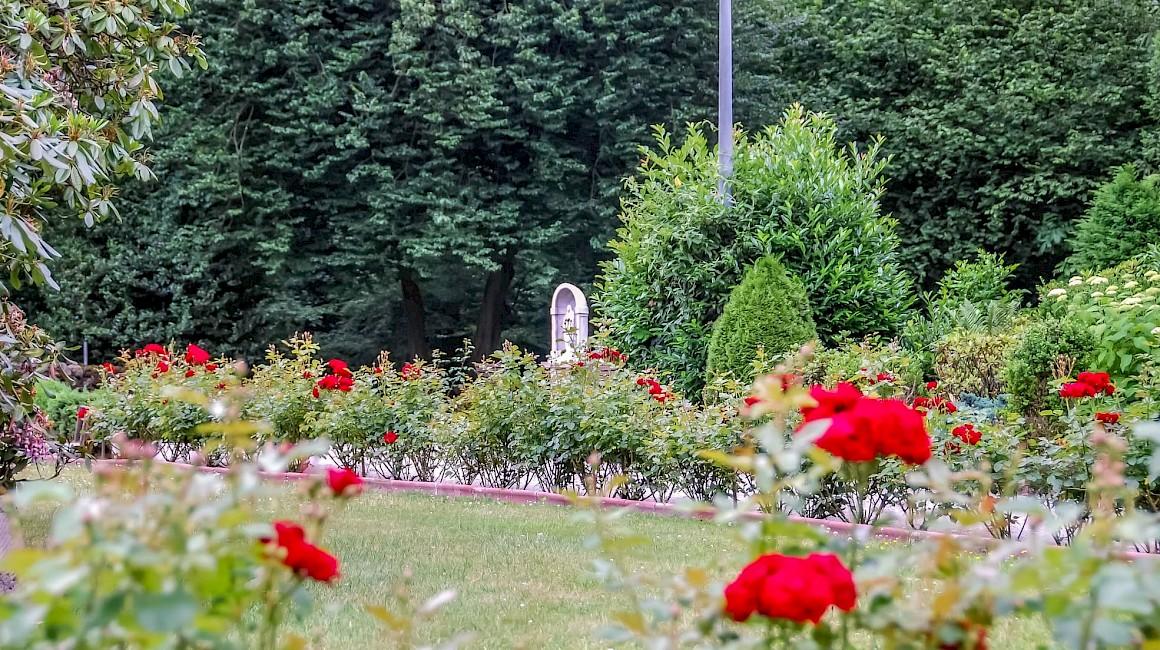 Der schöne Park am Schloss Sythen zur Rosenblüte