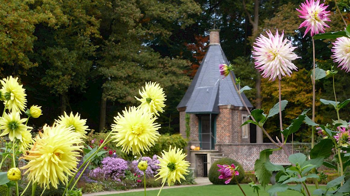Herbstblumen lassen den Park am Haus Welbergen erstrahlen