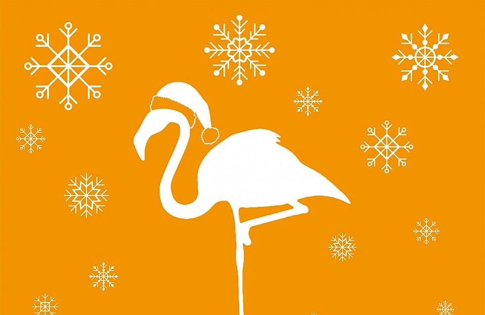 Mission Weißer Flamingo Weihnachtsfolge