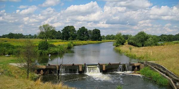 Das Steinhorster Becken bei Delbrück