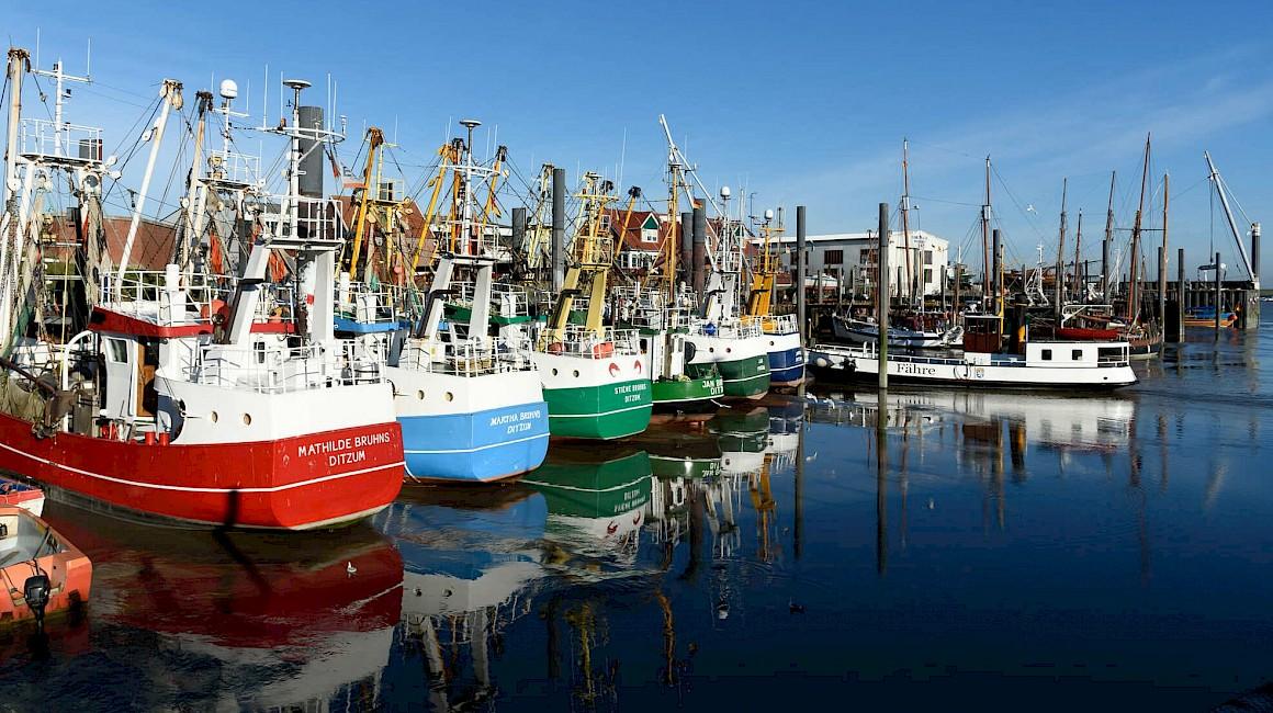Gerade zu malerisch liegen die Schiffe im Hafen von Ditzum