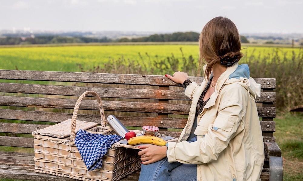 Picknick im Früling