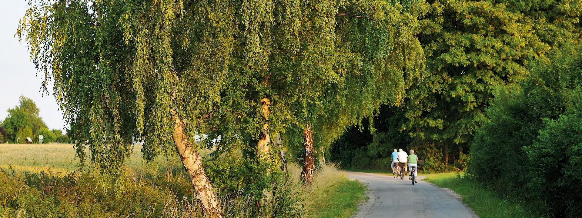 Den WerseRadweg in Beckum erleben 2 Tage | ab 47,- €