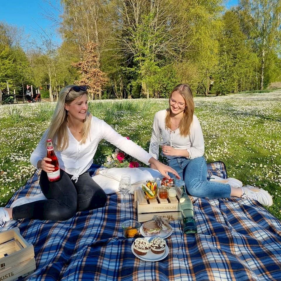 Picknickplatz Inselparkgelände Gronau