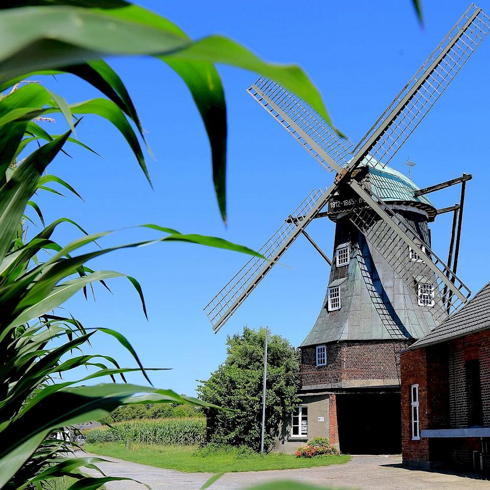 Die Mühle Menke in Südlohn