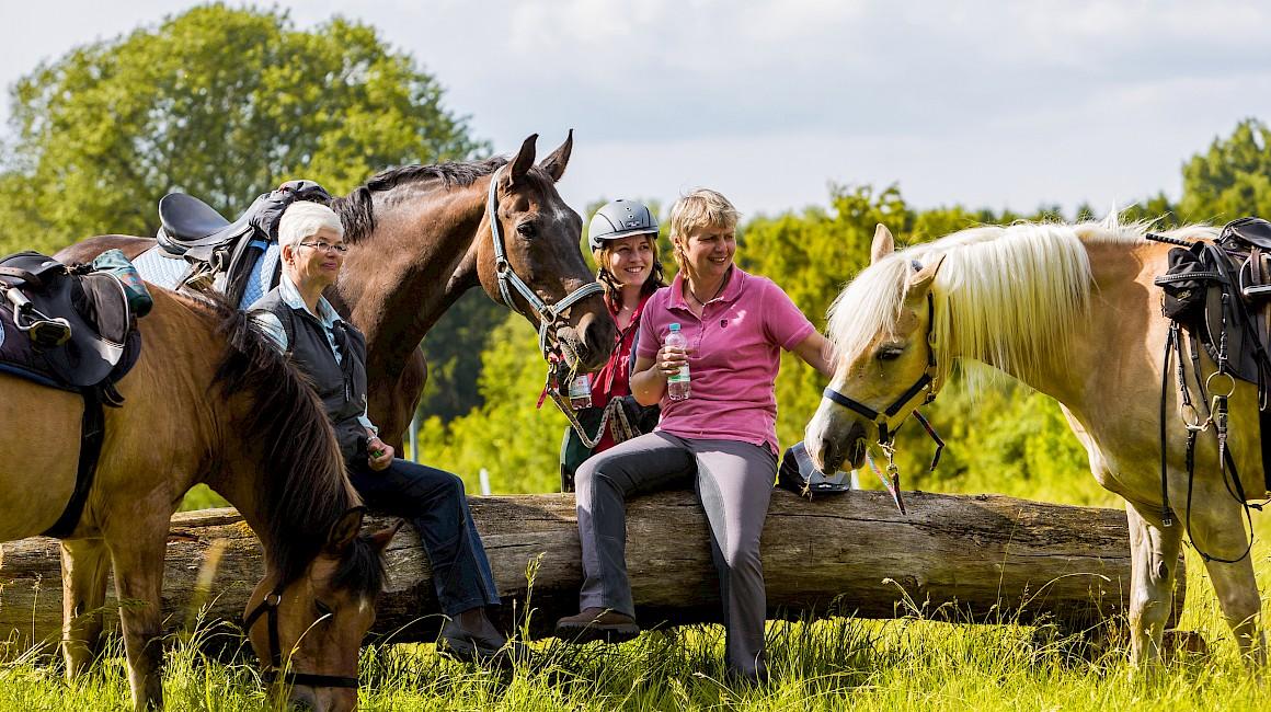 Wadersloh - Bei Reitern sehr beliebt