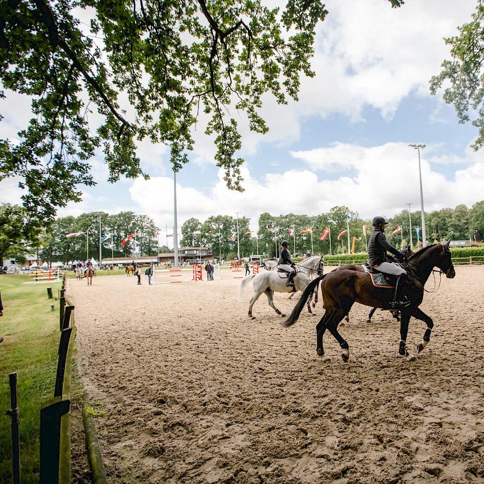 Veranstaltungen in der Pferderegion