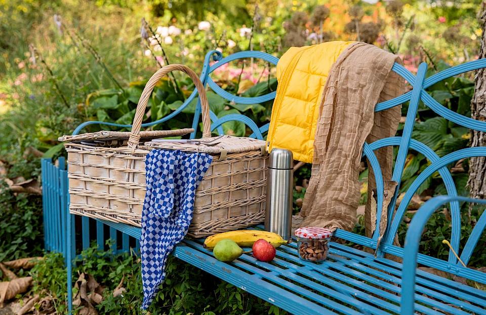 Münsterland-Picknick im Herbst
