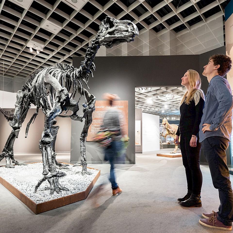 Dinosaurier im LWL-Naturkundemuseum