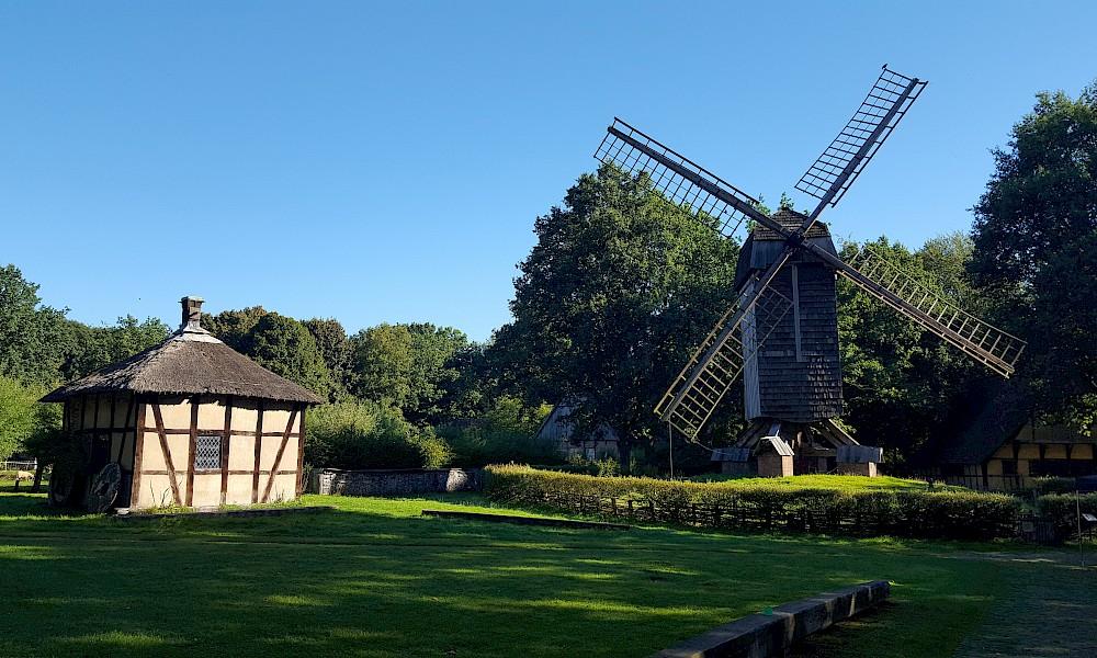 Rossmühle und Bockwindmühle im Freilichtmuseum Mühlenhof