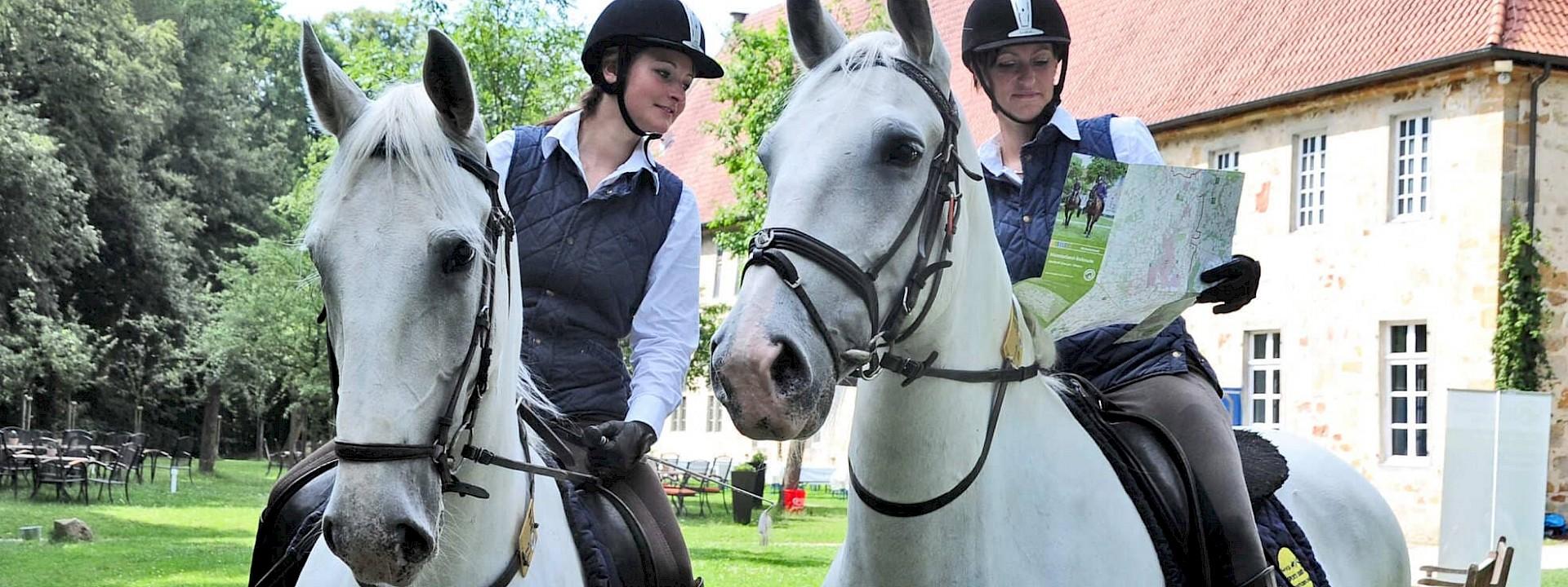 Im Pferdesattel durch das Steinfurter Land Münsterland - Reitroute