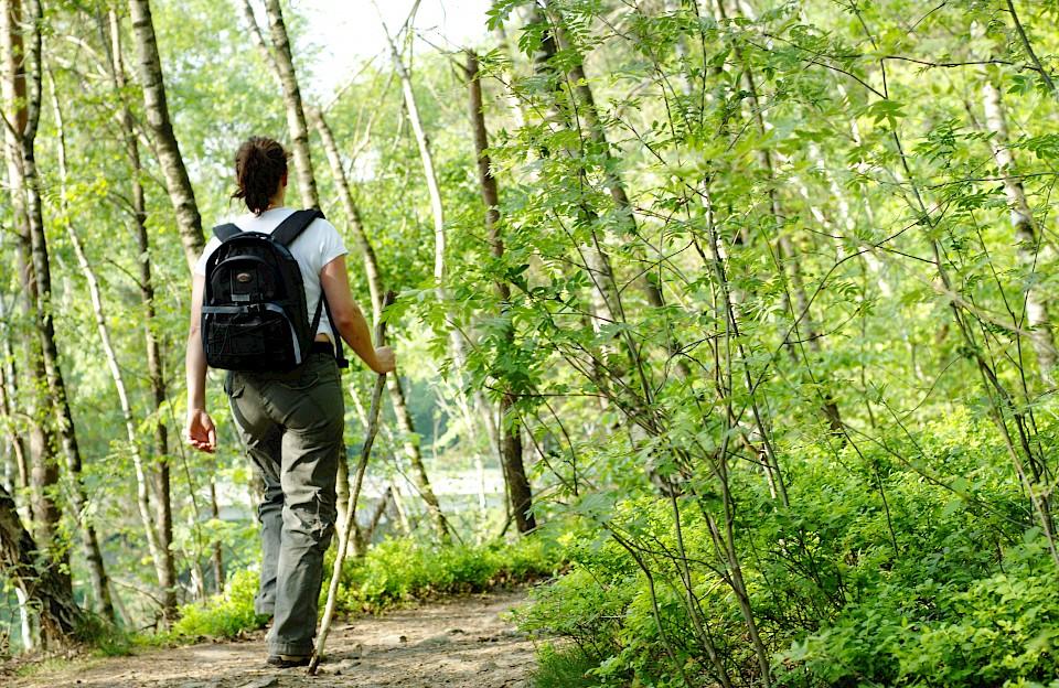 Das Münsterland bietet rund 3000 Kilometer Wanderwegenetz.